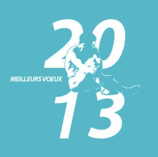 meilleurs voeux 2013 de l'IOAPC